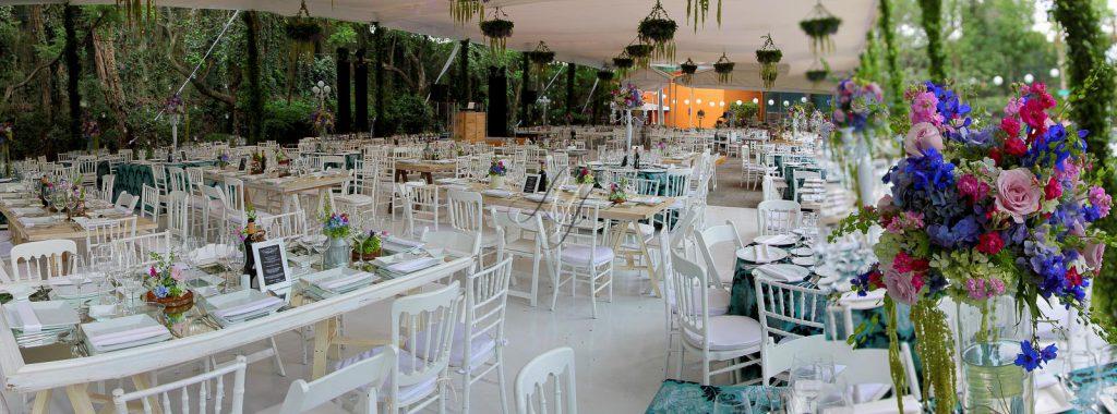 10 tips para el gran d a foro ceremonia nupcial for Arbol de fuego jardin