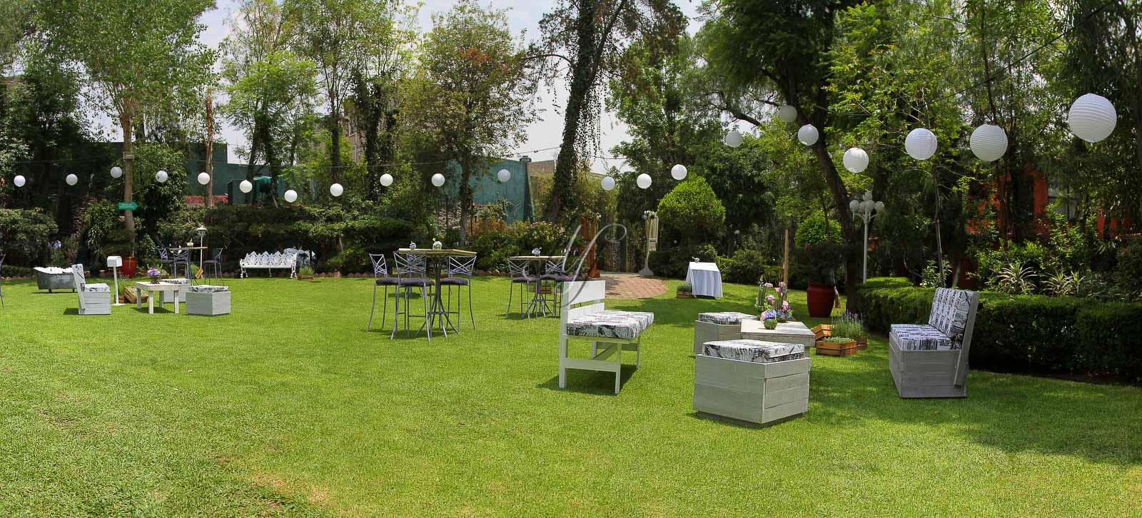 Arbol de fuego banquetes hada martens for Jardines mexico